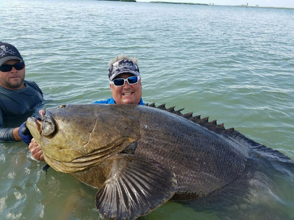 Father and son with a bunch of big fish cape coral for Father son fishing