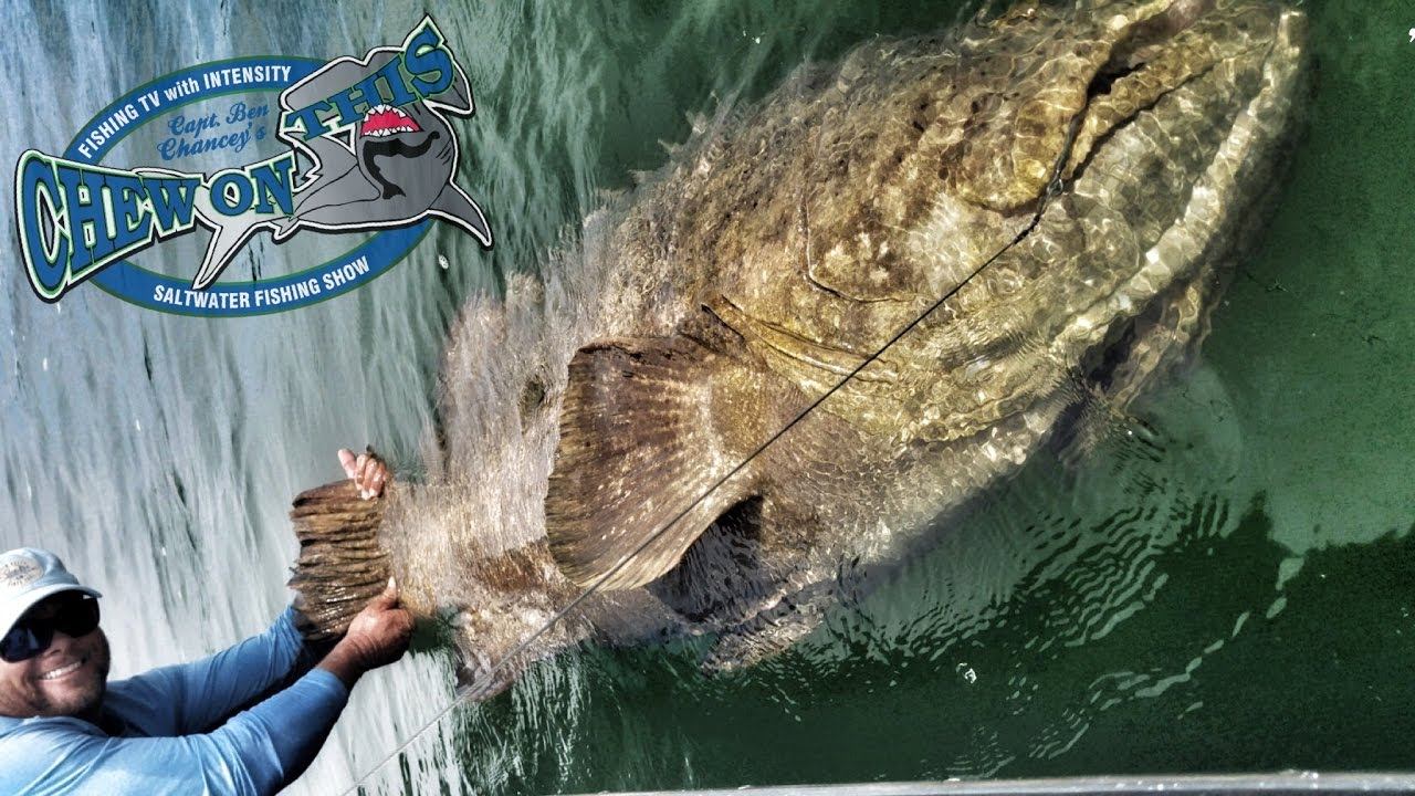 Deep sea fishing how to catch big fish saltwater for Best deep sea fishing in florida